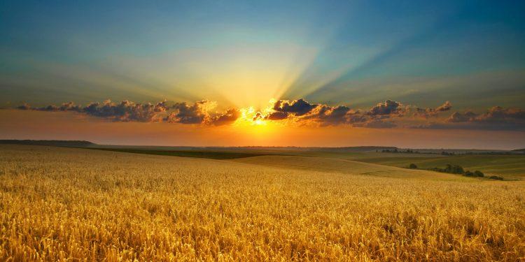 مسیحیت کی تعلیم - آج کا پیغام - خدا انصاف اور صداقت کو پسند کرتا ہے - خدا کو سچائی پسند ہے
