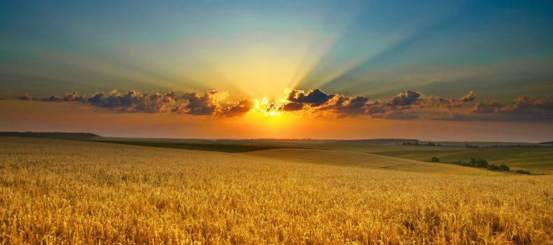 مسیحیت کی تعلیم - آج کا پیغام - خدا انصاف اور صداقت کو پسند کرتا ہے