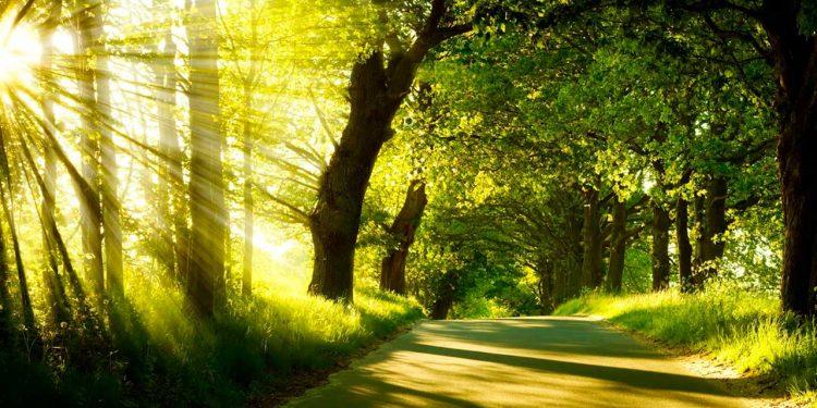 خُداوند تیرا خُدا جہاں تو جائے تیرے ساتھ رہے گا - مسیحی پیغام - ریٹا کنول - خداوند کی مدد
