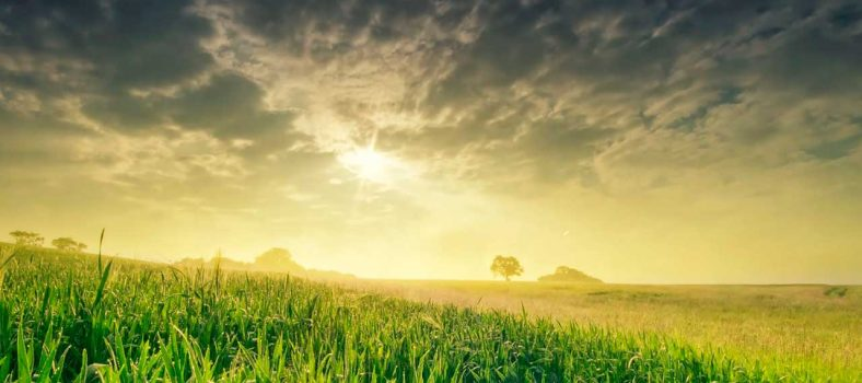 Kewajiban setiap manusia di Bumi - Indonesia Bible study - Kezia maria
