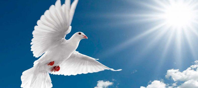 شاگردوں کو روح القدس کا اختیار - خداوند کے احکام - قوموں کو شاگرد بناؤ
