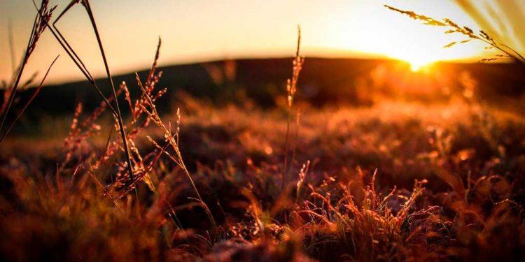 Doa Pengampunan Dosa - Belajar Mengenal Pribadi Yesus