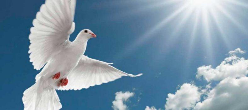 Doa Untuk Roh Kudus - Mengenal Pribadi Yesus Kristus