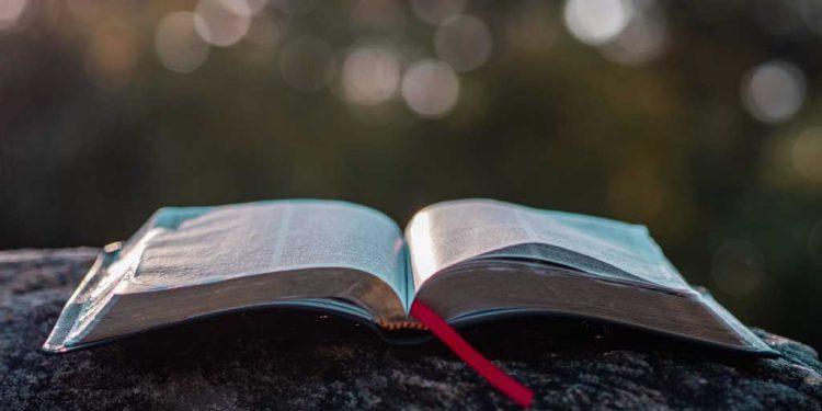 آج کا پیغام زمین پر اور کوئی باپ مت بناؤ کیونکہ ہمارا آسمانی باپ ایک ہے