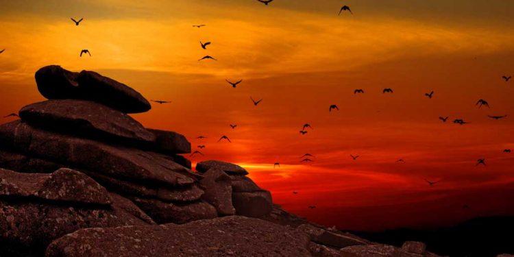 فرمابرداری کا انعام خدا دیتا ہے - خداوند کے احکامات پر عمل - یسوع کی فرمابرداری