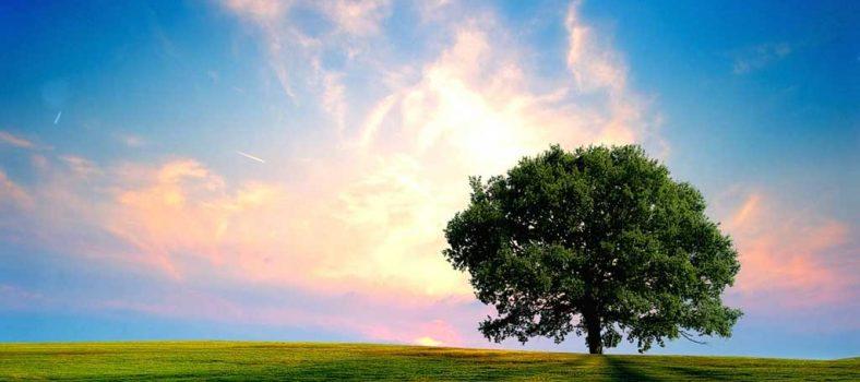 مصیبت اور دکھ میں دعا - خداوند سے مشکلات سے رہائی کی دُعا - نجات کی رہائی