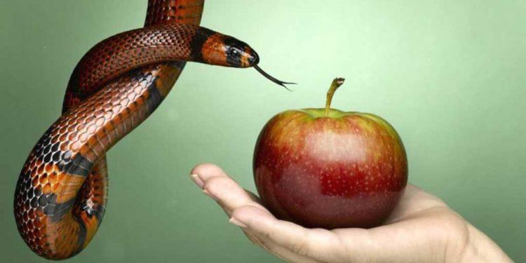 گناَہ سے کیسے بچا جائے - گناَہ کے راستے سے دور رہنے کا حکم - پاک کلام کی رہنمائی