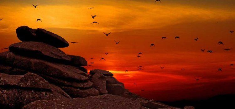 Ketaatan dihargai oleh Tuhan - Yesus Untuk Indonesia