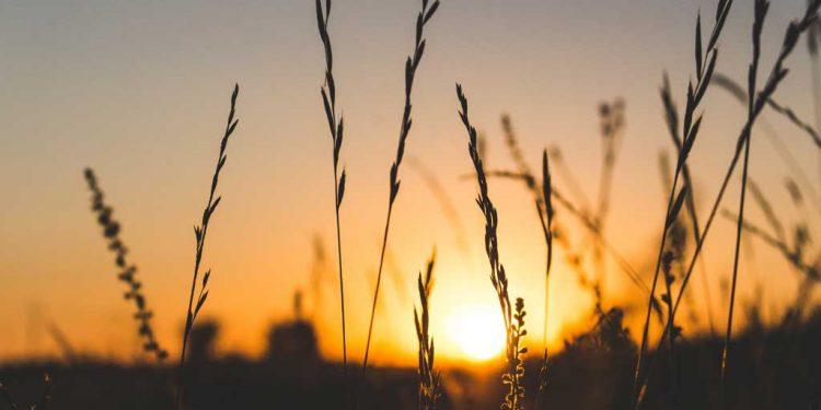 زبور 7 - عدل و انصاف کے لئے دُعا - خداوند کی قوت حاصل کرنے کے لئے دُعا - صادق لوگ