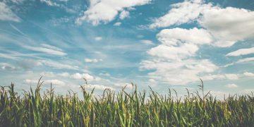 زبور 29 - طوفان میں خداوند کی آواز - خداوند کی جلالی آواز - خداوند کی قوت والی آواز - لُبنان