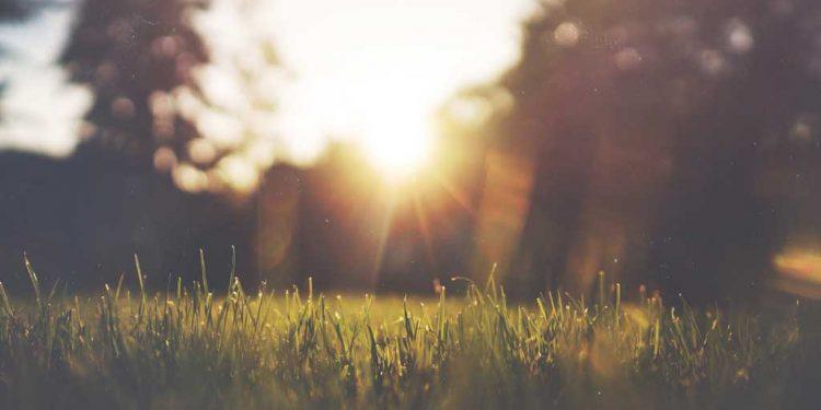 یسوع مسیح میں نجات - یسوع مسیح میں ایک نئی زندگی - نیکدُیمُس کو مسیح کا پیغام