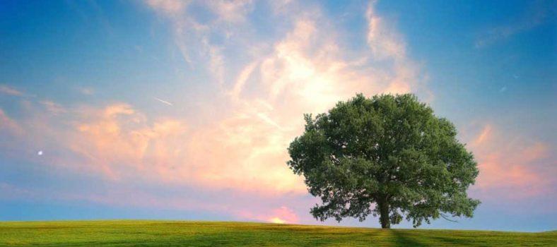 خُدا کی مرضی کے مطابق زندگی گزارنا - ایک نئی زندگی میں داخل ہونا
